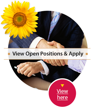 Careers - Apply Online