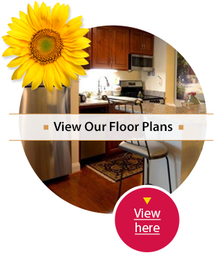 View Our Floor Plans at Westminster Canterbury Richmond in Richmond, VA